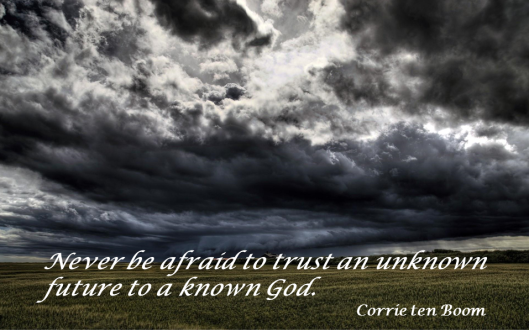 Never Be Afraid to Trust