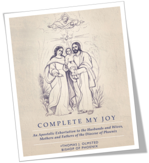 Complete My Joy_Cover